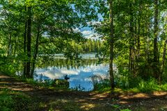Free Lush Green Lakeside View From A Sunny Summer Sweden Stock Images - 212837074