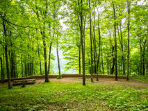 Lush, Green Landscape with Path and Stone Wall Royalty Free Stock Photos