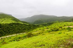 Lush green landscape, trees and foggy mountains in Ayn Khor tourist resort, Salalah, Oman. Summer In Salalah Oman, Lush green landscape, trees and foggy royalty free stock photography
