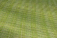 Lush green lawn background. Lush green lawn mown in criss-cross pattern Stock Photos