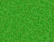 Lush green leaves backgrounds Royalty Free Stock Photography