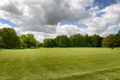 Lush green manicured lawn and trees Royalty Free Stock Photo
