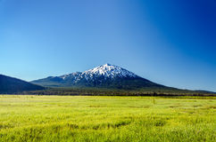 Lush Green Meadow and Mount Bachelor Royalty Free Stock Photos
