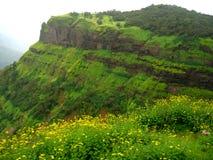 Free Lush Green Mountain Stock Photos - 1278573
