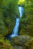 Bridal Veil Falls Columbia River Gorge. Lush green plants and trees frame the cascading waters of Bridal Veil Falls in the Columbia River Gorge Royalty Free Stock Images