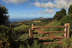 Lush green St Helena Island country landscape Stock Photography
