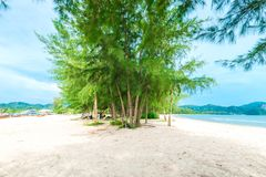 Lush green trees and turquoise sea with white sandy beach. Krabi province, Thailand stock photo