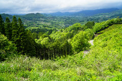 Lush greenery mountain panorama, bridge and town view from afar Stock Photos