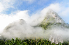 Lush high mountains covered by mist Royalty Free Stock Photography