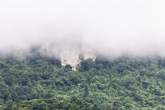 Lush high mountains and fog in Doi inthanon, Maeglangluang Stock Photography