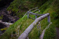 Lush hillside trail to Devil's Churn in Cape Perpetua, Oregon Stock Images