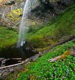 Lush Idyllic Rain Forest Waterfall Royalty Free Stock Photo