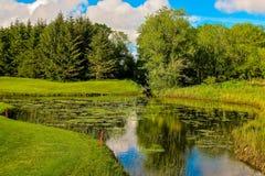 Free Lush Irish Pond Stock Images - 91076904