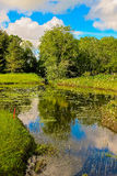 Lush Irish Pond. This is a picture of a lush pond taken in county Clare, Ireland Royalty Free Stock Photo