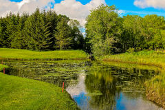 Lush Irish Pond. This is a picture of a lush pond taken in county Clare, Ireland Stock Images