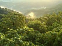 Lush Japanese Mountainscape Royalty Free Stock Images