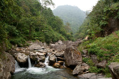 Lush landscape with river Stock Photo