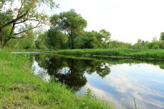 Lush landscape Stock Photography