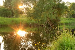Lush landscape Royalty Free Stock Photography