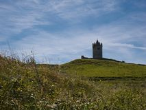 Meadow with the tower from a Castle in Ireland stock photography
