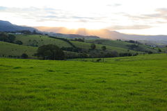 Lush green hills landscape at sunset. Lush green hills scenery with a sunset behind the mountain in the background (Kiama, Australia&#x29 Royalty Free Stock Image