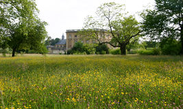 Lush Meadow Outside Marie Antoinette's House. Lush green meadow outside Marie Antoinette's house, Versailles Stock Photos