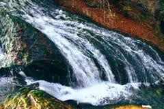 Lush mountain. Water in autumn Stock Photo