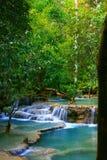 Lush Paradise Royalty Free Stock Photography