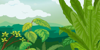 Lush plant life. Lush plants and fern illustration Stock Photography