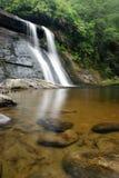 Lush Rain Forest Waterfall Stock Photography