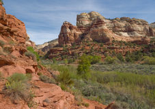 Lush river valley in red sandstone desert canyon Royalty Free Stock Images