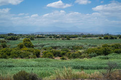 Lush South African Landscape with Mountains, Fields, Bushes Royalty Free Stock Images