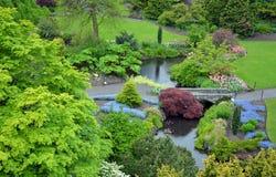 Lush Spring Garden Stock Image