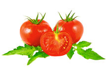 Lush tomatos with green leafs. Isolated Stock Photos