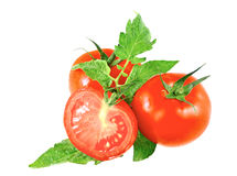 Lush tomatos with green leafs. Isolated. Over white Royalty Free Stock Image