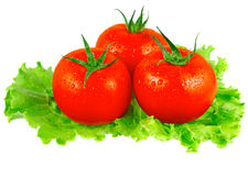 Lush tomatos with green leafs. Isolated. Over white Stock Photos