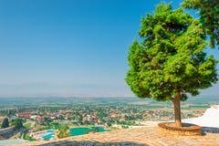 Lush trees on the hill Pamukkale Stock Photo