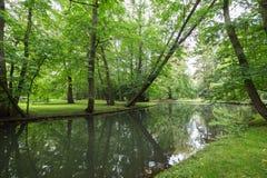 Lush trees and river at the Oliwa Park Stock Image
