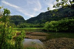 Free Lush Tropical River And Mountains Stock Photography - 12895002