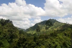 Lush Tropical Valley, Mindanao, Philippines. This image shows the lush tropical valleys of  the Mindanao province of the Philippines Royalty Free Stock Photography