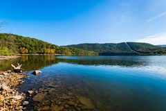 Lush Vegetation Around Raystown Lake, in Pennsylvania During Sum Royalty Free Stock Image
