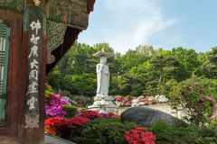 Lush vegetation and Buddha statue at the Bongeunsa Temple in Seoul. Side of a building, lush vegetation and Mireuk Daebul statue (The Great Statue of Maitreya Stock Photography