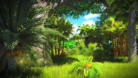 Lush vegetation in jungle Stock Photos
