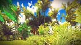 Lush vegetation in jungle Stock Image