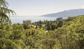 Lush vegetation of spring Crimea.Top view of the black sea coast.  royalty free stock images