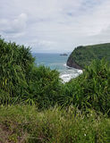 Lush Vegetation and a Striking View of the Ocean from Polulu Trail Stock Photo