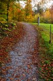 Lush vibrant woodlands path during the autum. N fall, colorful foliage and trees stock image