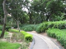 The lush Victoria park, Hong Kong stock photography