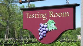 Lush vineyards (3 of 4) stock video footage