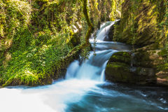 Lush waterfall. Slow shutter speed horizontal photo of a small waterfall Stock Images
